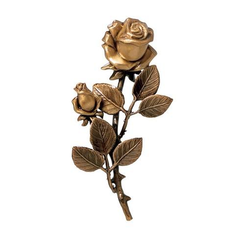 Розы - 4