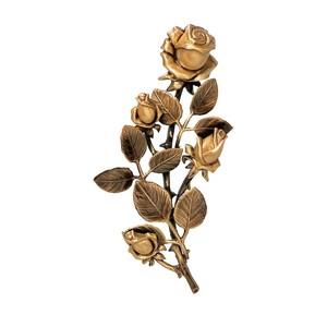 Розы-2